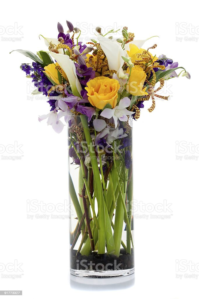 Vase of Color royalty-free stock photo