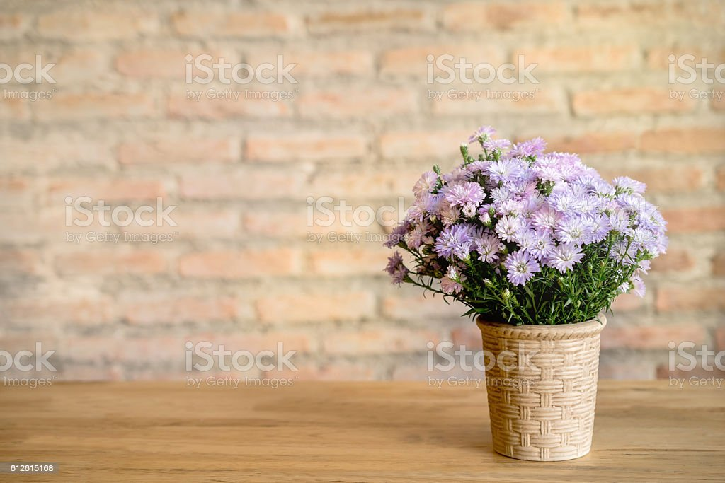 Vase of flowers on the table stock photo