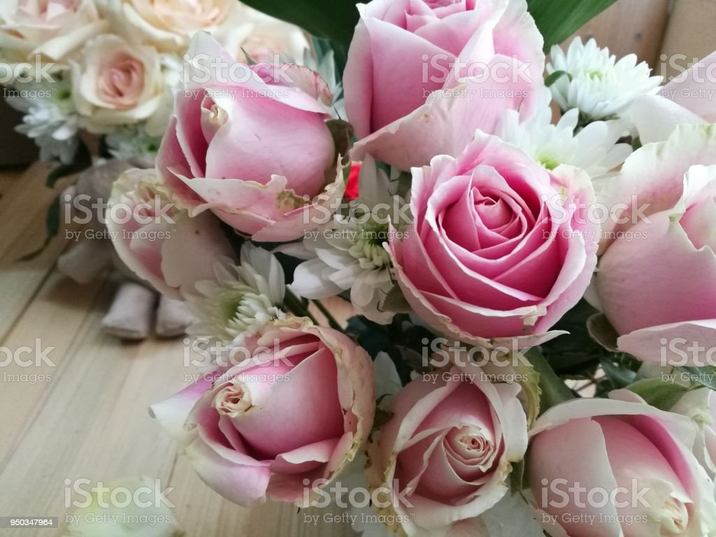 Vase of pastel roses bouquet on white background set of beautiful vase of pastel roses bouquet on white background set of beautiful flower love and izmirmasajfo