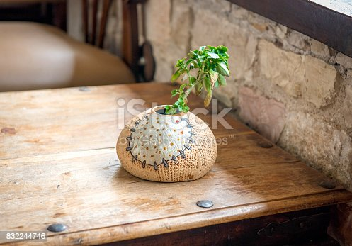 istock Vase with a single green plant on wooden table 832244746