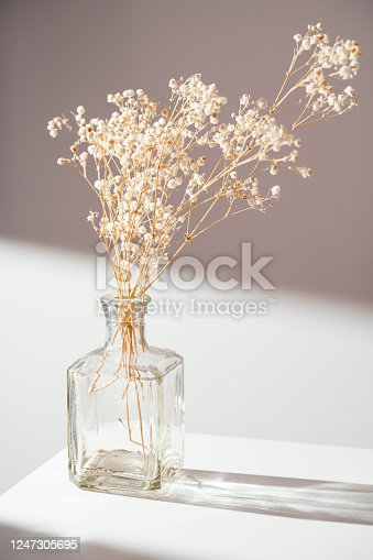 Vase with decorative flowers on the table, long shadows under natural sunlight