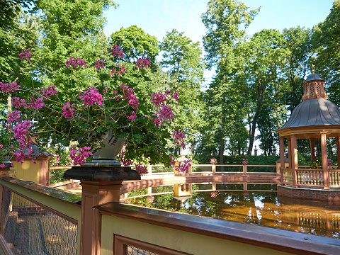 Vase with flowers next to Menagerie Pond Bosquet in Saint Petersburg, Russia