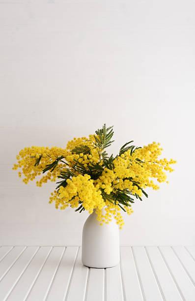 vase mit mimosen-blumen - keramik vase stock-fotos und bilder