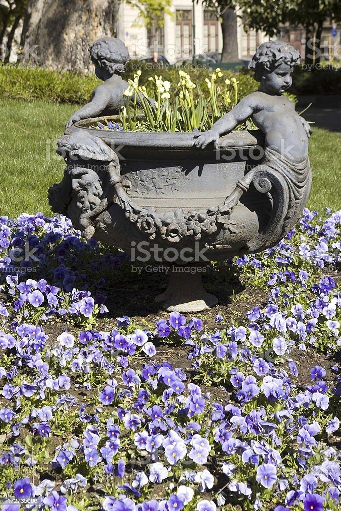 Fiori 66.Vaso Di Fiori Torino Stock Photo Download Image Now Istock