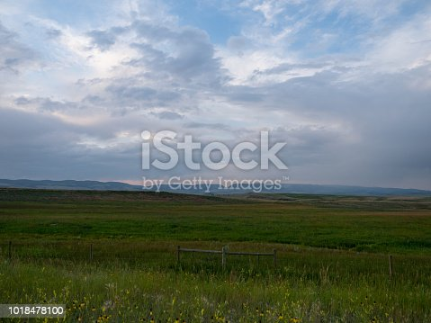 A vast meadow with lush green grass and yellow prairie coneflowers in the foreground and a mountain range in the background. Cloudy sky is above.