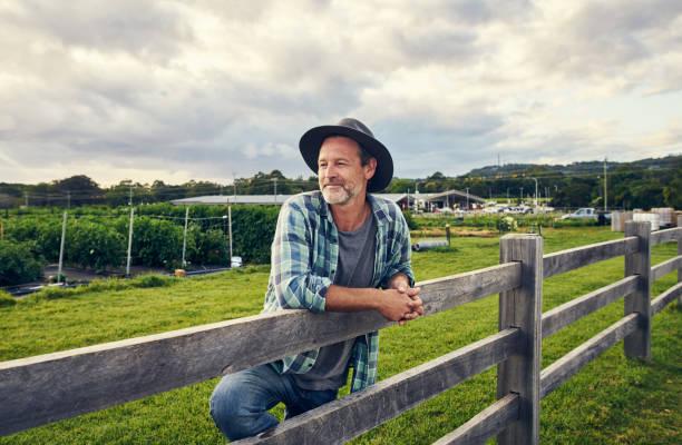 Ich bin seit Jahren in der Landwirtschaft-Handel – Foto