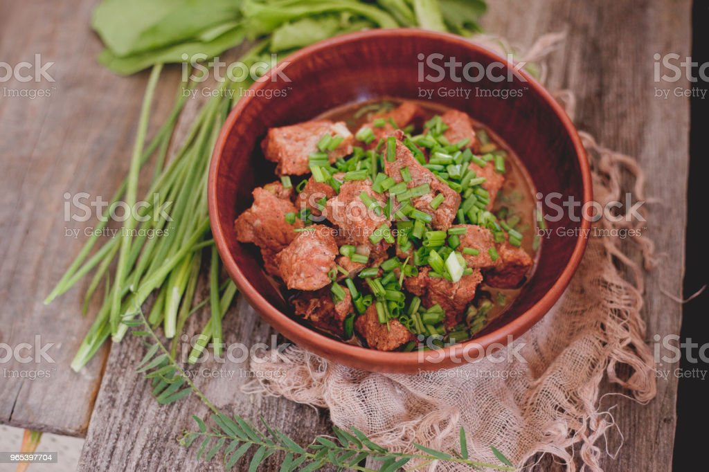 veal with green onion on a clay plate royalty-free stock photo