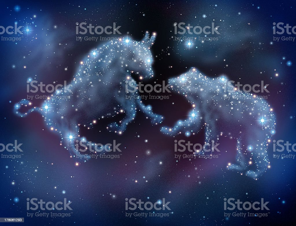 Vector bull and bear constellations stock photo