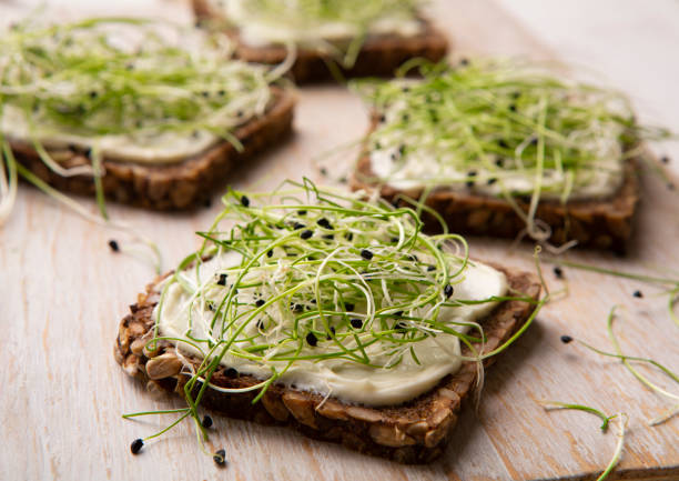 Vegan sandwiches with tofu cheese and fresh microgreen Vegan sandwiches with tofu cheese and fresh microgreen on wooden cutting board, close up microgreen stock pictures, royalty-free photos & images
