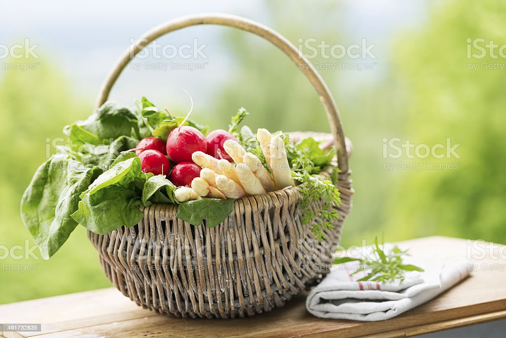 vegan spring vegetables basket with spinache radishes asparagus and chervil royalty-free stock photo
