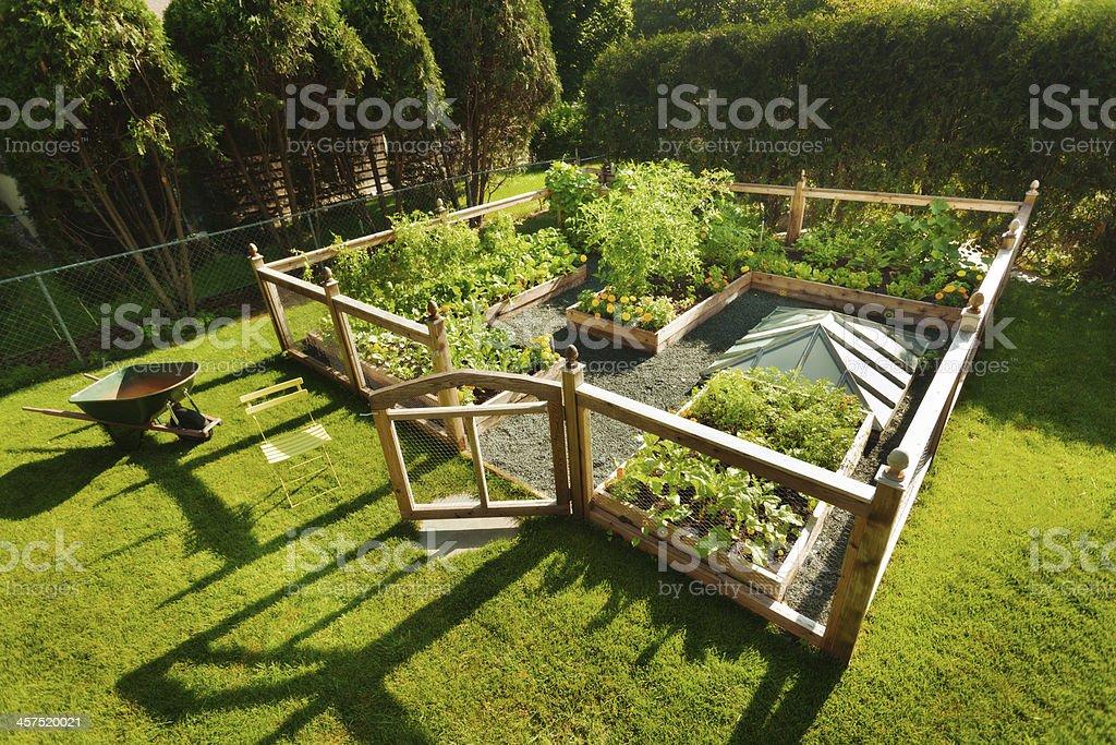 Vegetable and Flower Garden in Residential Backyard stock photo