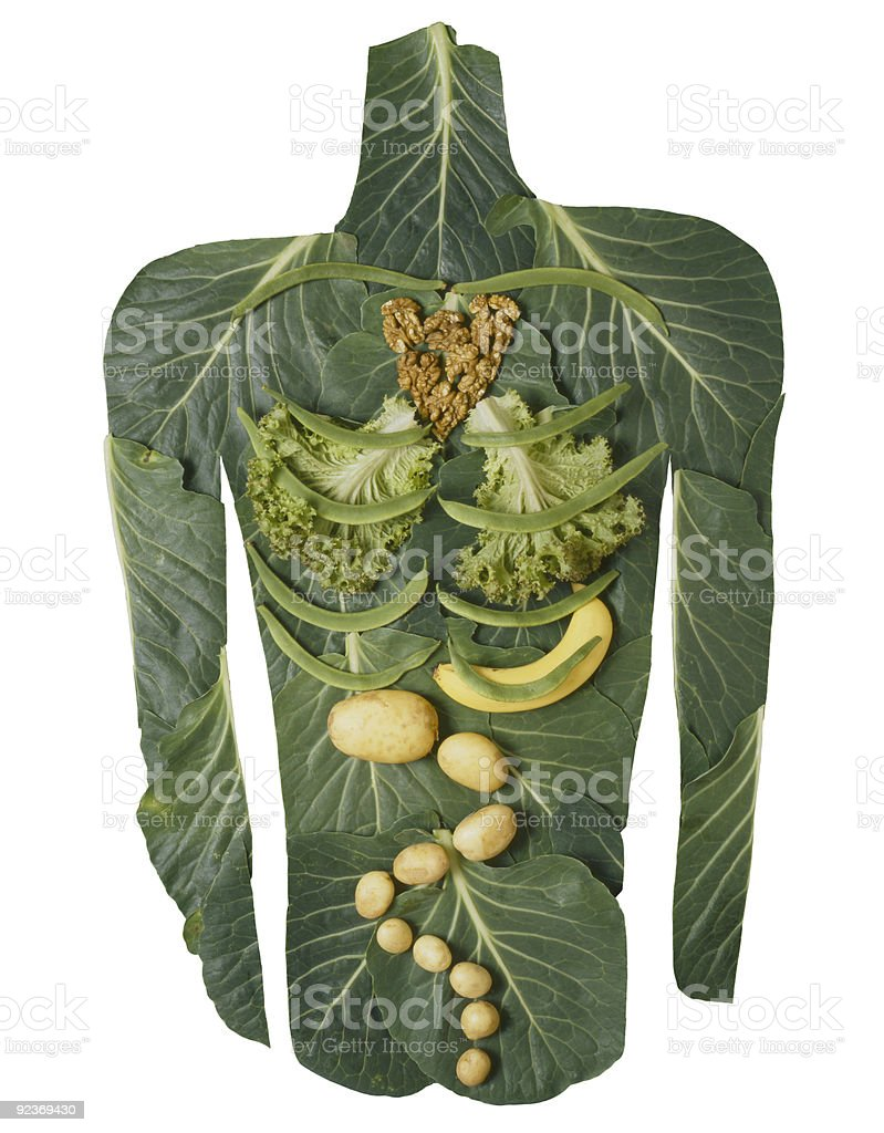 Vegetable body on white. royalty-free stock photo