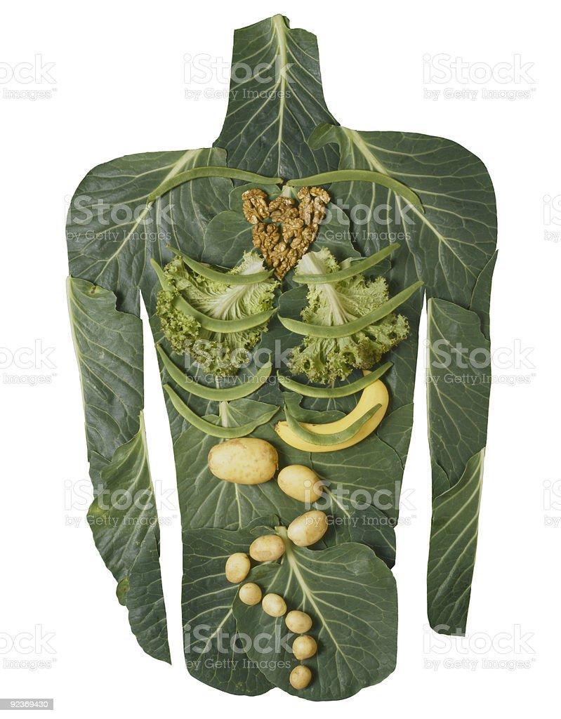 Vegetable body on white. stock photo