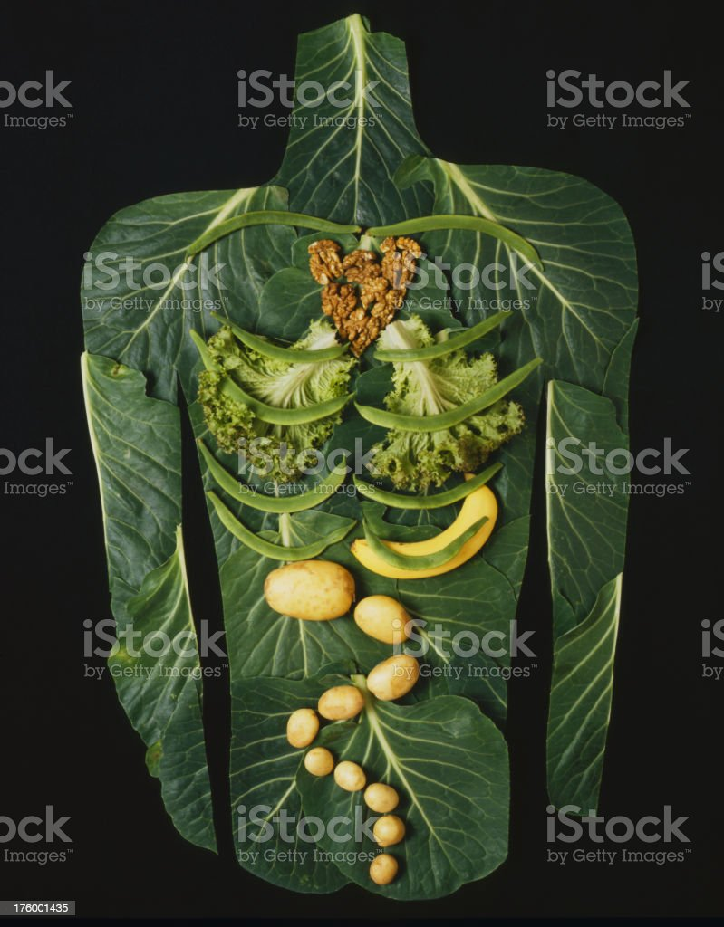 Vegetable body royalty-free stock photo