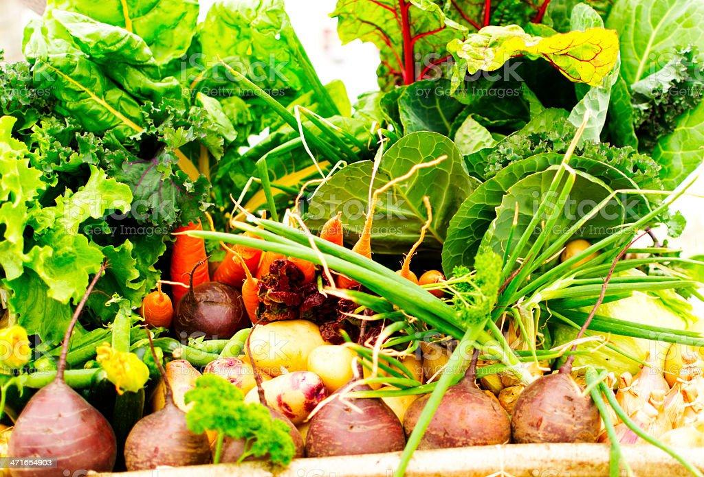 Vegetable box stock photo