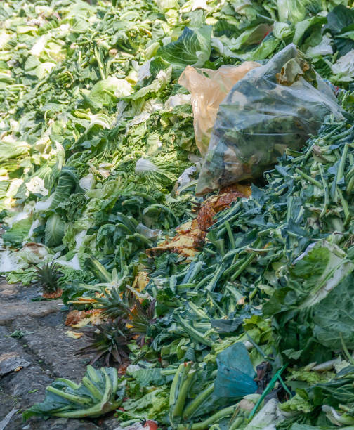 Vegetable compose pile stock photo
