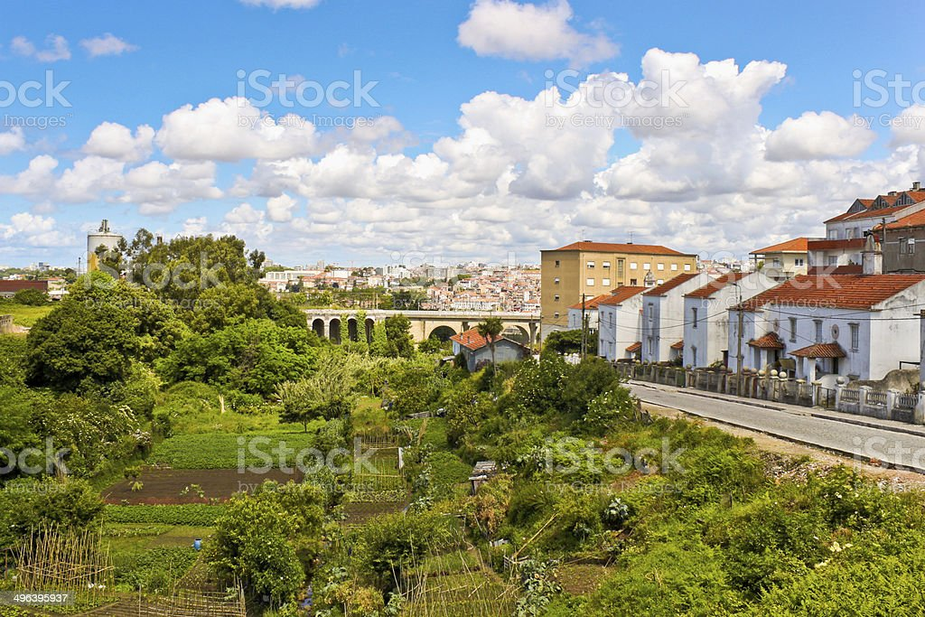 Vegetable gardens on the street of Vila Nova de Gaia stock photo