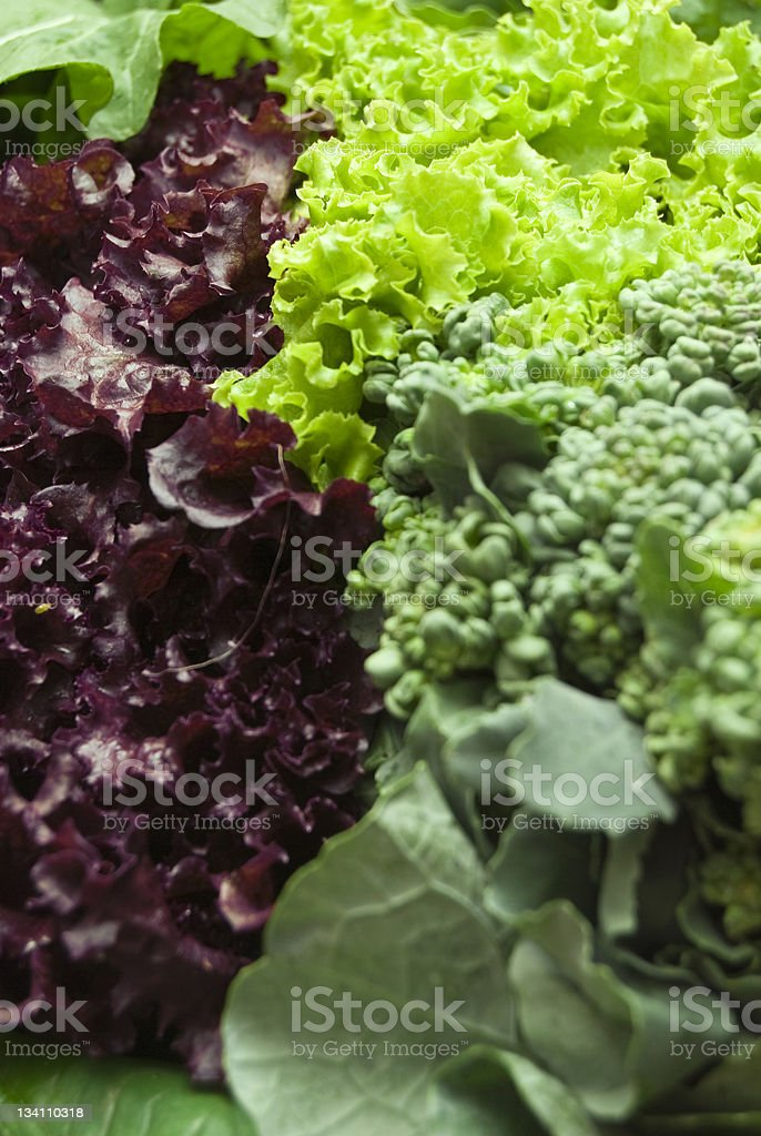 Vegetable leaves royalty-free stock photo