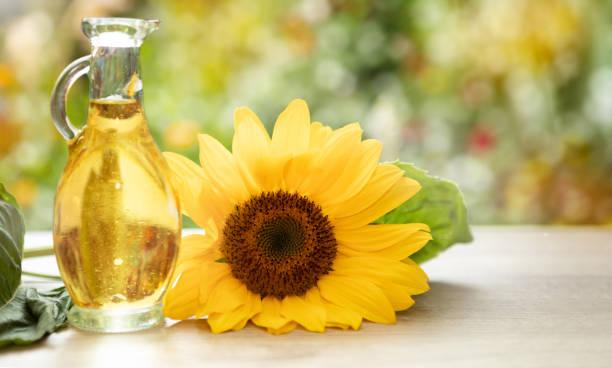 huiles végétales le plus ancien produit de soins de beauté - cold pressed photos et images de collection