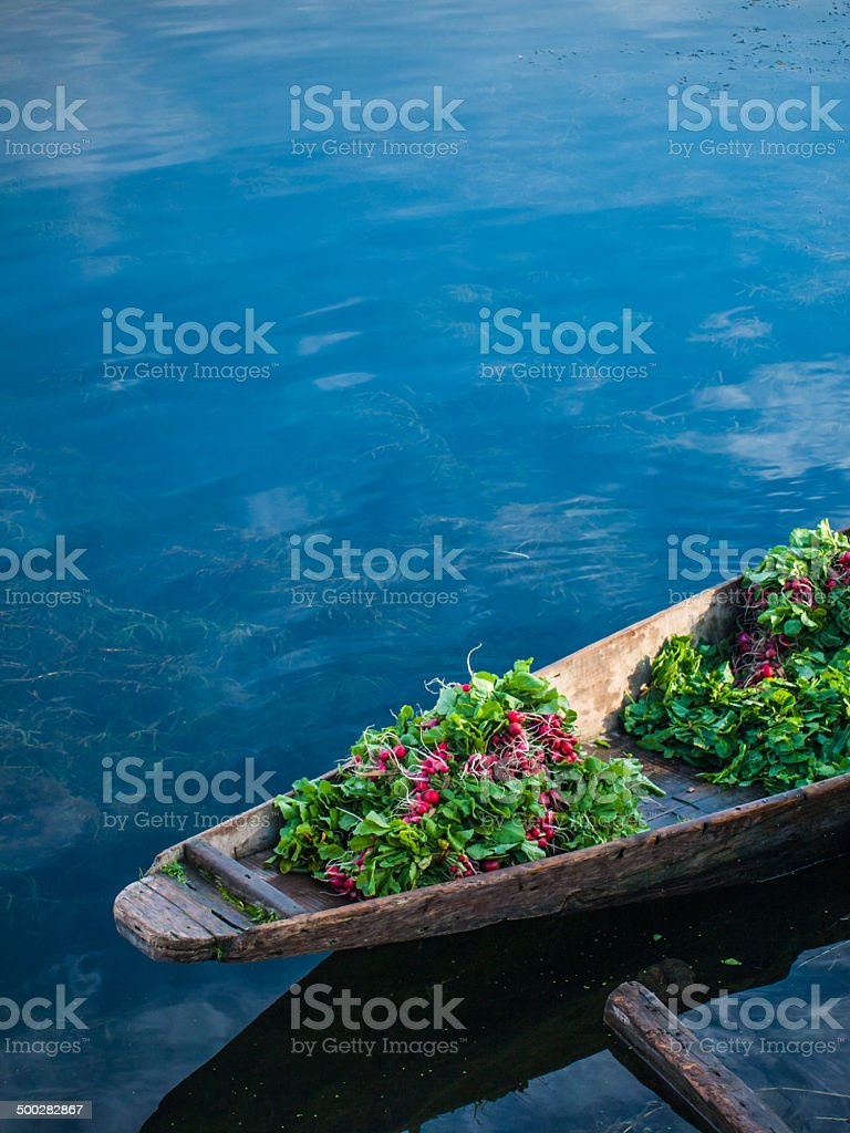 Vegetable on boat stock photo
