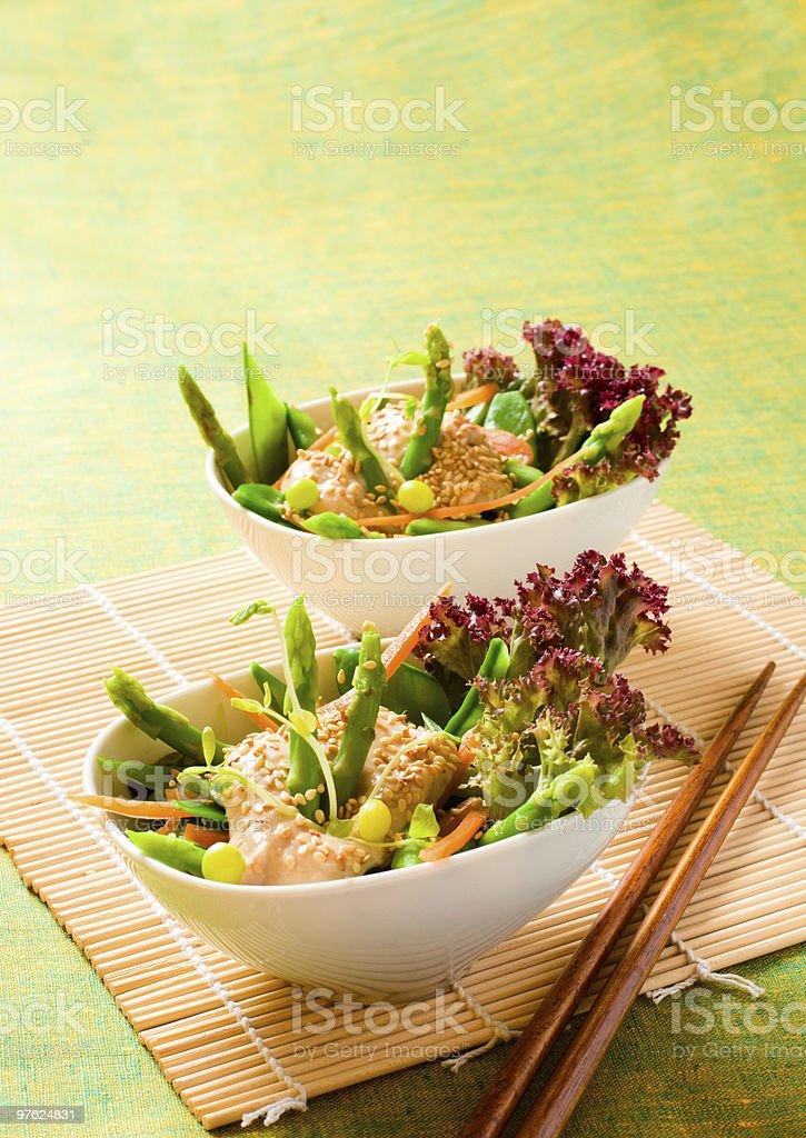 vegetable salad royalty-free stock photo