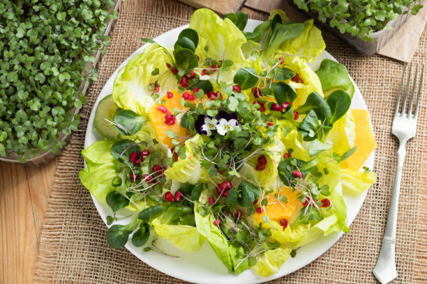 Vegetable salad with fresh kale and broccoli microgreens, lettuce, corn salad, pomegranate, orange, avocado and edibe flowers Vegetable salad with fresh kale and broccoli microgreens, lettuce, corn salad, pomegranate, orange, avocado and edibe flowers, top view microgreen stock pictures, royalty-free photos & images