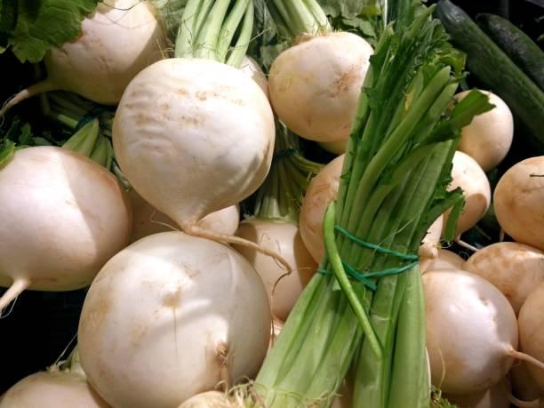 Vegetable - white radish bundled stock photo