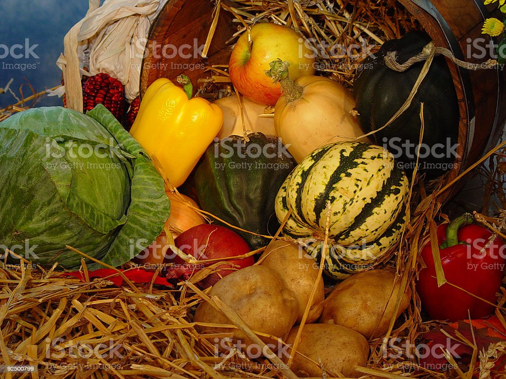 Vegetables 2 royalty-free stock photo