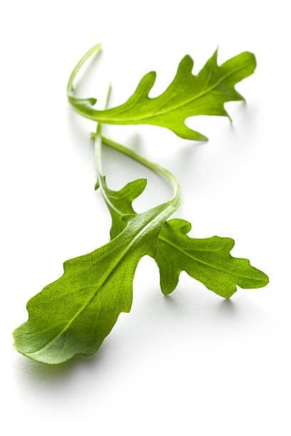 vegetables: arugula lettuce isolated on white background - marul stok fotoğraflar ve resimler
