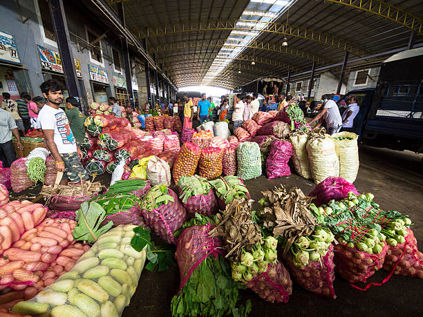 gemüse in dambulla großhandel obst- und gemüsemarkt, sri lanka - zimt gurken stock-fotos und bilder