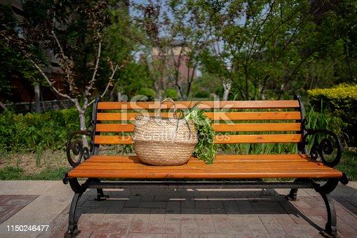 vegetables basket on garden bench