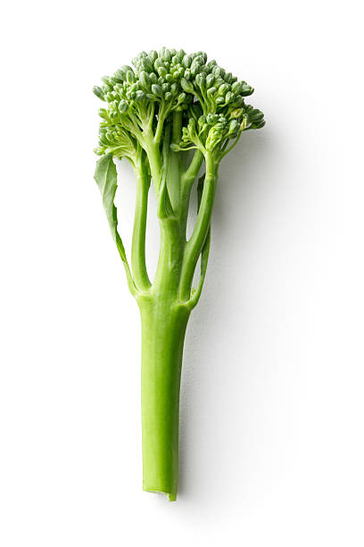 Vegetables: Broccolini Isolated on White Background stock photo