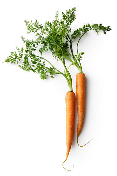 produtos hortícolas: cenoura - cenoura imagens e fotografias de stock