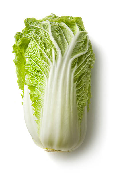 Vegetables: Chinese Cabbage Isolated on White Background stock photo