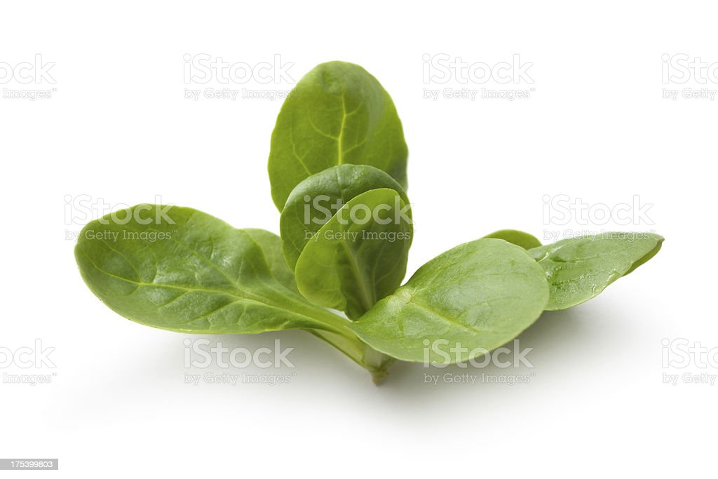Vegetables: Corn Salad Isolated on White Background stock photo