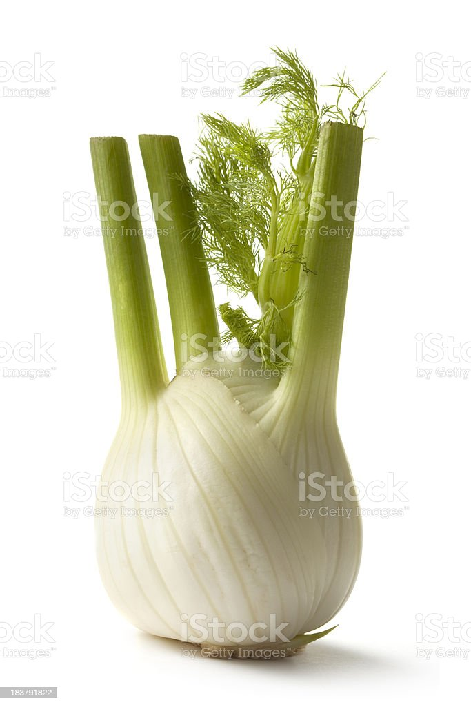Vegetables: Fennel Isolated on White Background stock photo