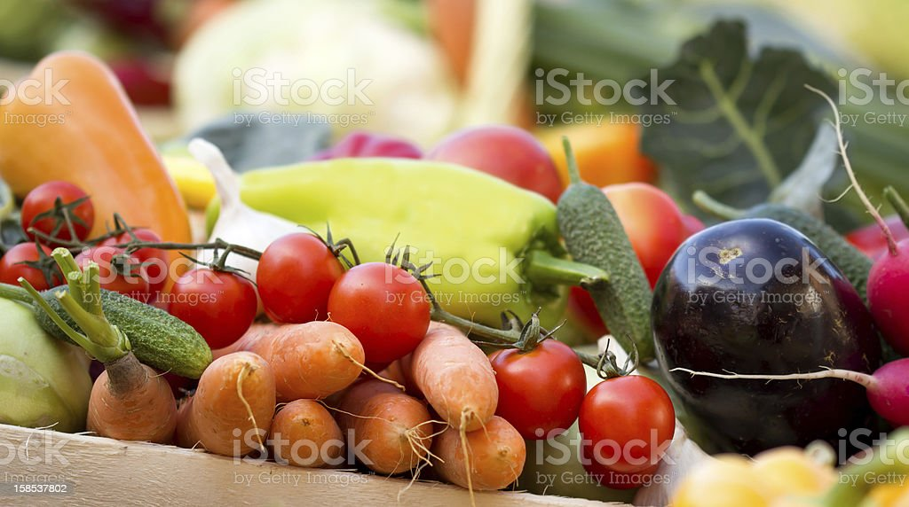Vegetables in crates royalty-free stock photo