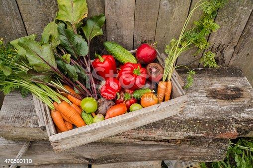 istock vegetables in the garden 476590110