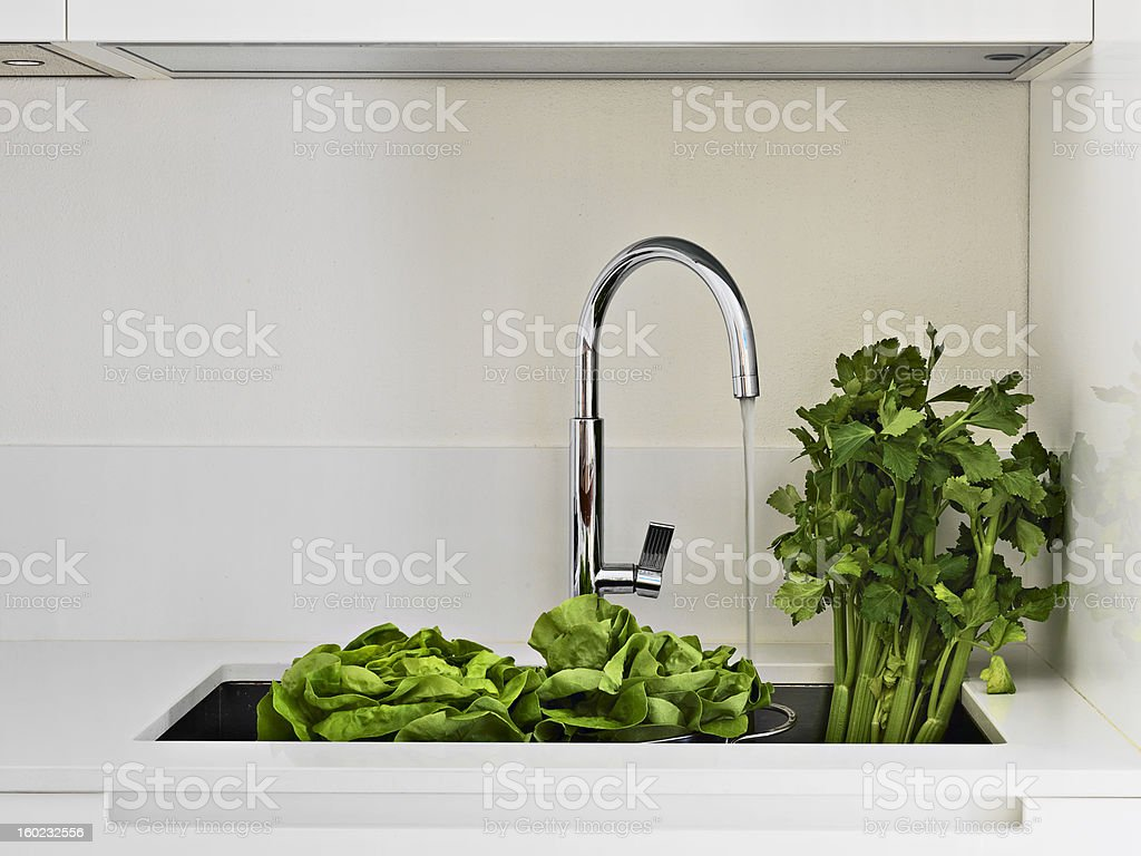 vegetables in the sink stock photo