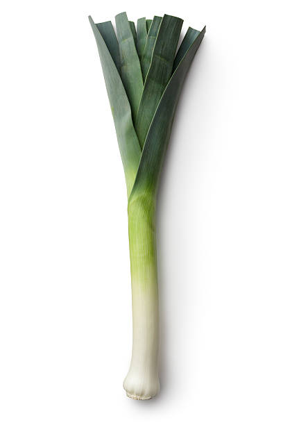 Vegetables: Leek Isolated on White Background More Photos like this here... leek stock pictures, royalty-free photos & images