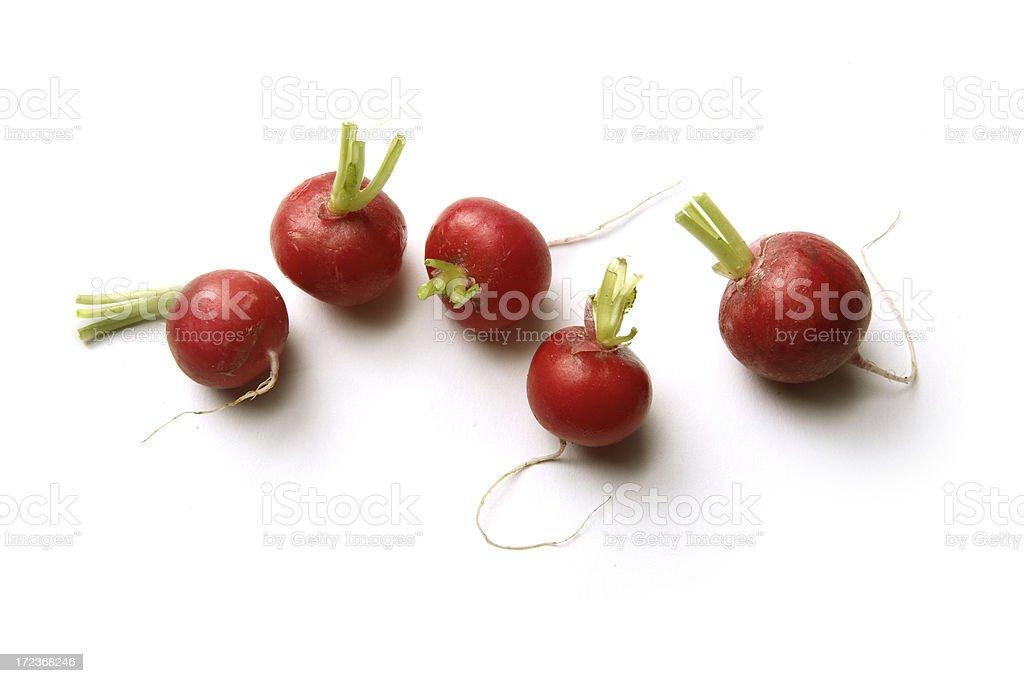 Vegetables: Radish Isolated on White Background royalty-free stock photo