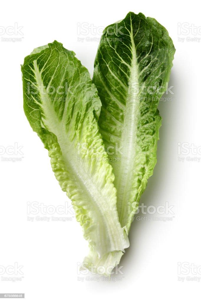 Vegetables: Romaine Lettuce Isolated on White Background stock photo