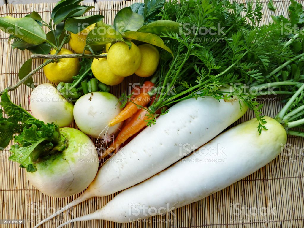 Vegetables(Winter) stock photo