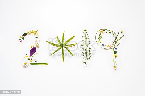 istock 2019 vegetal and floral background 1067773150