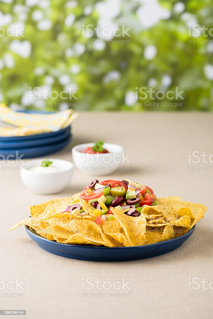 Vegetarian nachos with salsa and sour cream dips royaltyfri bildbanksbilder