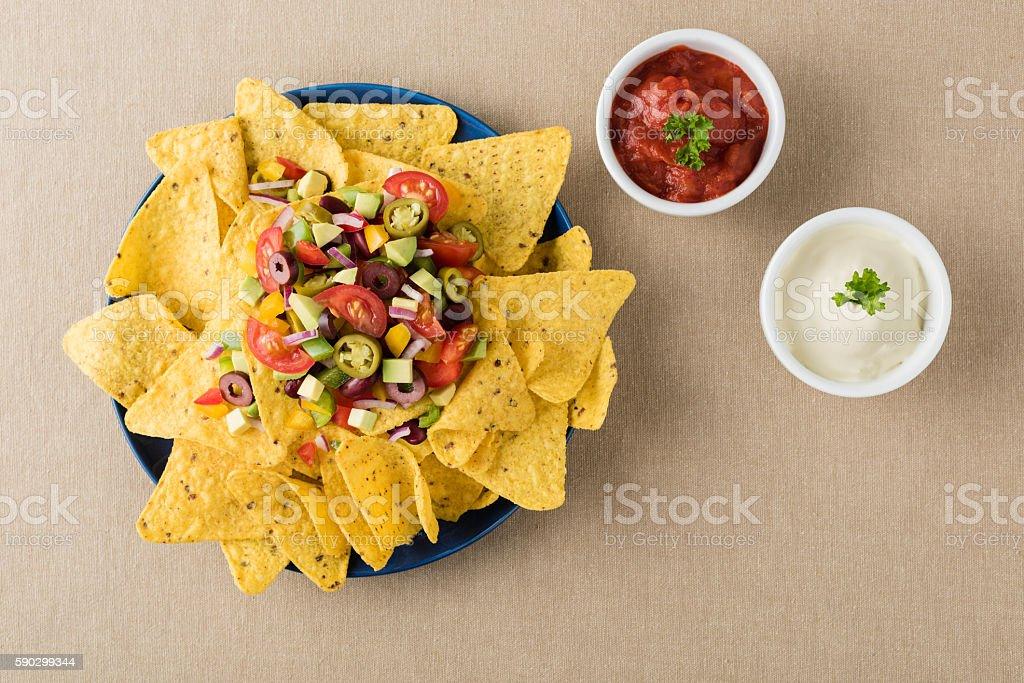 Vegetarian nachos with salsa and sour cream dips royaltyfri bildbanksbilder