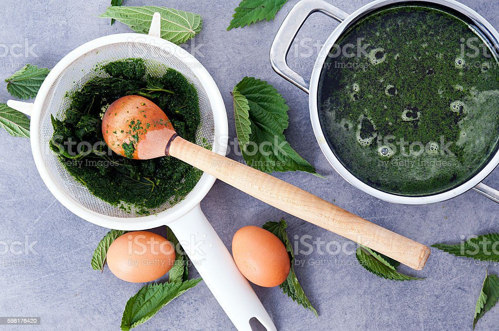 vegetarian nettle soup stock photo