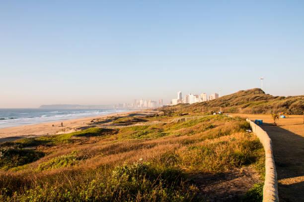 Vegetation bedeckte Dünen werden in Durban saniert – Foto
