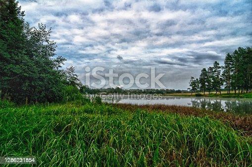 istock Vegetation near the reservoir. Grass by shore of the lake. 1286231854
