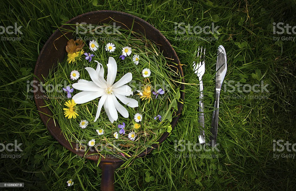 Vegeterian breakfast stock photo